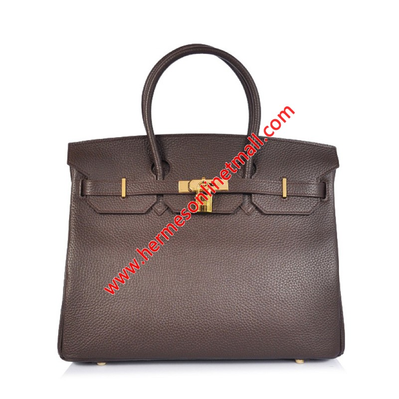 Hermes Birkin Bag Togo Leather Gold Hardware In Coffee