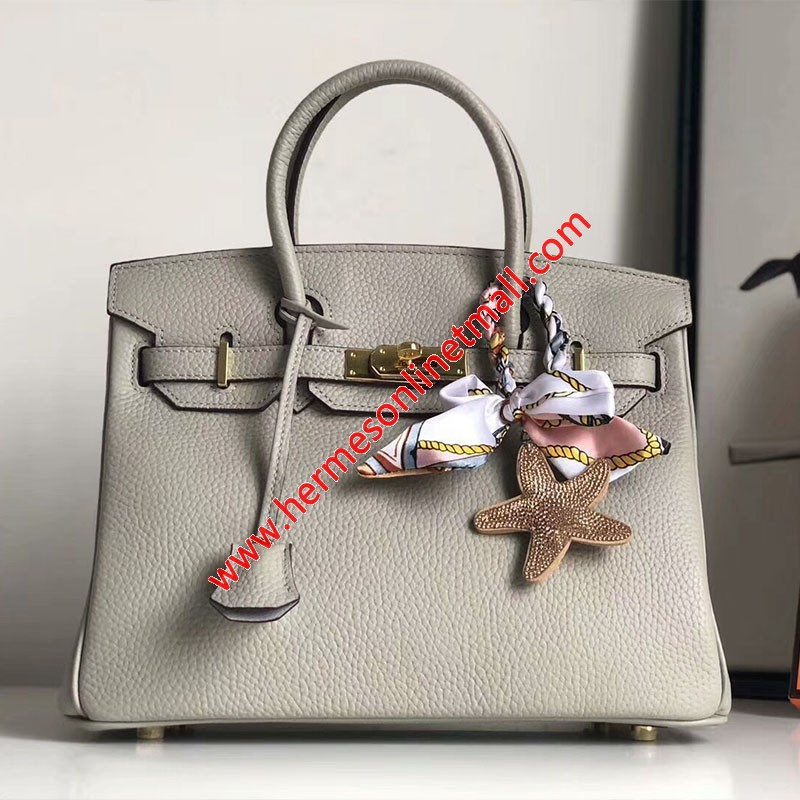 Hermes Birkin Bag Togo Leather Gold Hardware In Grey