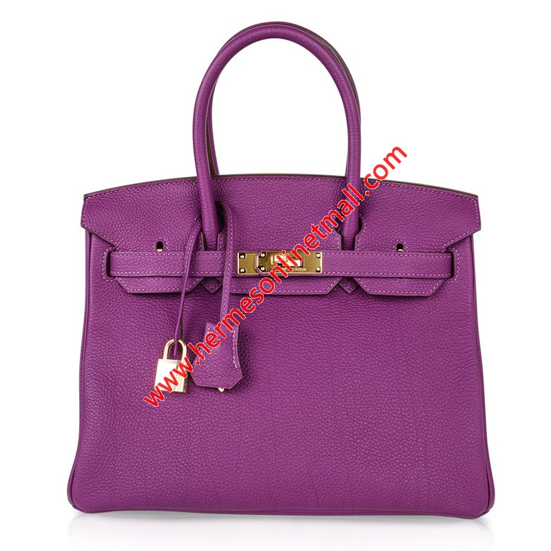 Hermes Birkin Bag Togo Leather Gold Hardware In Purple