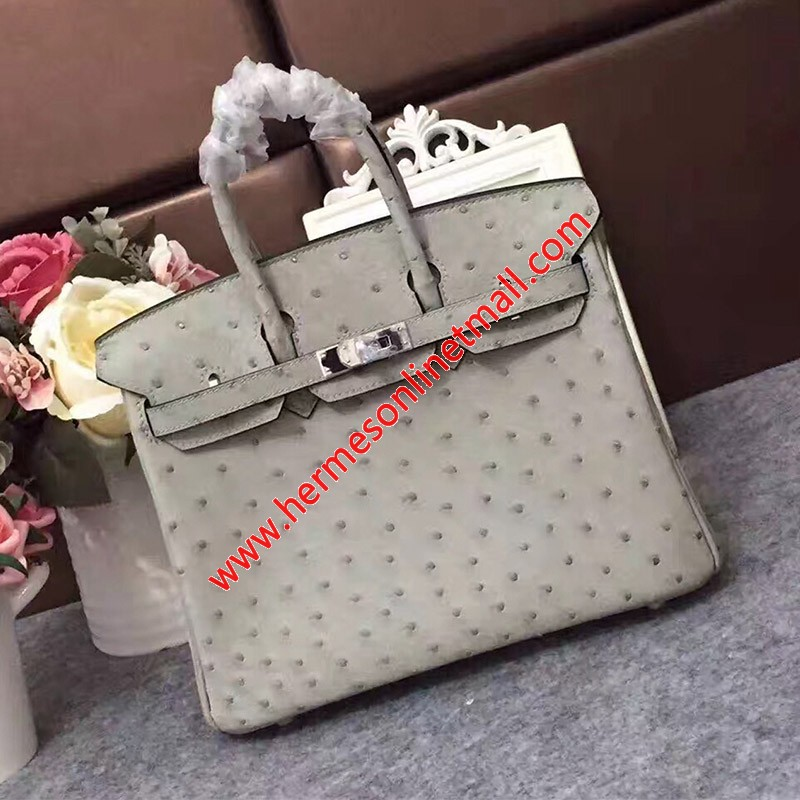 Hermes Birkin Bag Ostrich Leather Palladium Hardware In Grey
