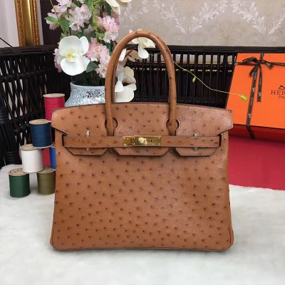 Hermes Birkin Bag Ostrich Leather Gold Hardware In Brown