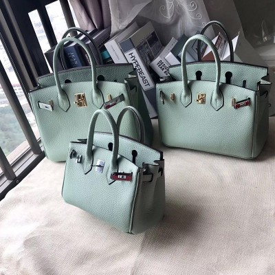 Hermes Birkin Bag Togo Leather Gold Hardware In Mint Green