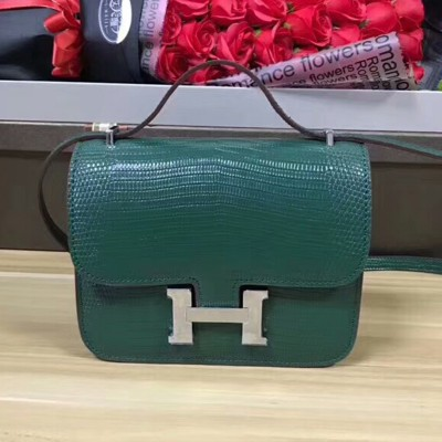 Hermes Constance Bag Lizard Leather Palladium Hardware In Green